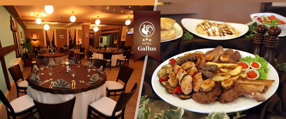 Najbolji nedjeljni ručak je u novom restoranu Hotela GALLUS*** u Zagrebu! Za samo 85 kuna uživajte u mesnoj plati za 2 osobe , pečenim krumpirima i salati!