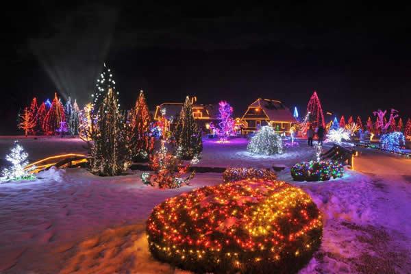 I ove godine zasjala Božićna priča obitelji Salaj GalleryImage714_3954