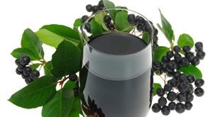 Matični sok od aronije ima snažno antioksidansno djelovanje te je prirodno oružje u prevenciji bolesti! Domaći sok proizvodnje OPG Aronija u pakiranju od 6 x 0,75l za 199 kn! Gratis dostava za ZG!