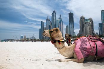 upoznavanje web stranica u Abha Dhabiju 40 godina stara djevica brzina izlazi s djevojkom