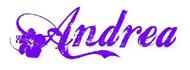 Salon za uljepšavanje Andrea