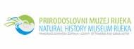 """Prirodoslovni muzej Rijeka - """"Divovi Patagonije"""" - izložbeni prostor u ex-Exportdrvu"""